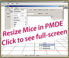 Use PMDE to adjust the size of the Nano-Rin mice!