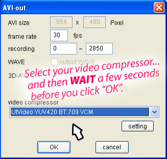 You might avoid that scrambled first frame of video by moving slowly as you click-through your options.