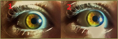 Eye textures that I photographed using my iPhone 5. I am trying to make a realistic eye texture for my MMD model.