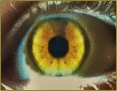 The Mirrored Eye... the dark side is covered with the mirror image of the brighter side.
